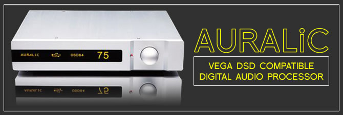 Vega DSD Compatible Digital Audio Processor