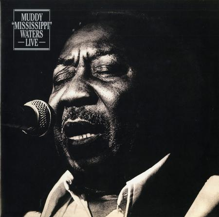 Muddy Waters - Muddy