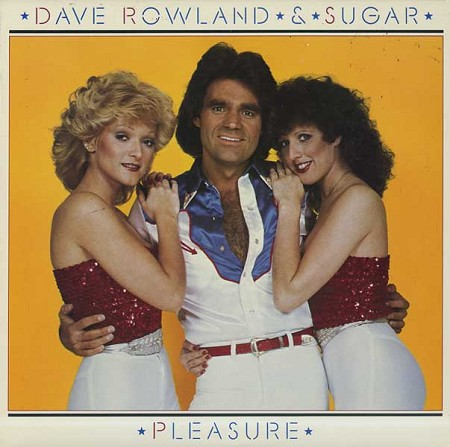 Dave And Sugar Dave Rowland and Sugar Stay With Me - Golden Tears