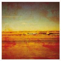 Damien Jurado - Where Shall You Take Me