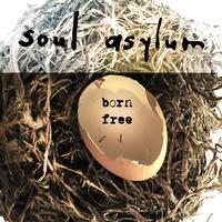 Soul Asylum - Born Free
