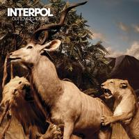 Interpol - Our Love To Admire -  Vinyl Record & DVD