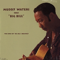 Muddy Waters - Muddy Waters Sings Big Bill Broonzy