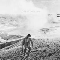 Jeff Tweedy - Love Is The King -  Vinyl Record