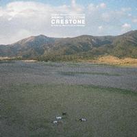 Animal Collective - Crestone -  Vinyl Record