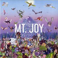 Mt. Joy - Rearrange Us -  Vinyl Record