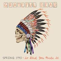 The Grateful Dead - Spring 1990- So Glad You Made It