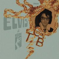 Elvis Presley - Elvis At Stax: 40th Anniversary Edition