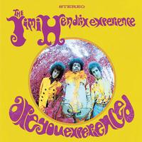 The Jimi Hendrix Experience - Are You Experienced? -  180 Gram Vinyl Record