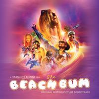 Various Artists - The Beach Bum