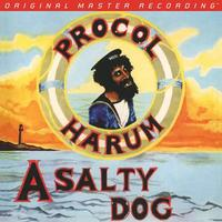 Procol Harum - A Salty Dog -  180 Gram Vinyl Record