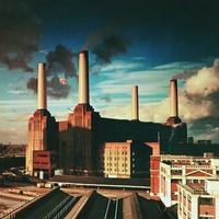 Pink Floyd - Animals -  180 Gram Vinyl Record