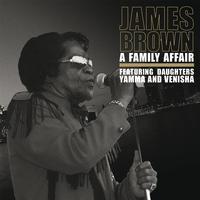 James Brown - Family Affair -  140 Gram Vinyl Record