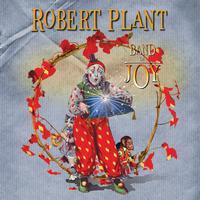 Robert Plant - Band Of Joy -  Vinyl Record