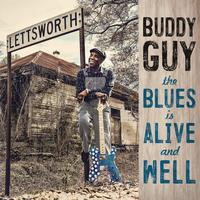 Buddy Guy - The Blues Is Alive And Well -  Vinyl Record