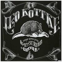 Leo Kottke - 6 And 12 String Guitar