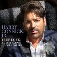Harry Connick, Jr. - True Love: A Celebration Of Cole Porter -  Vinyl Record