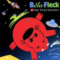 Bela Fleck And The Flecktones - Flight Of The Cosmic Hippo