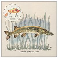 Nick Lowe - Lay It On Me -  Vinyl Record