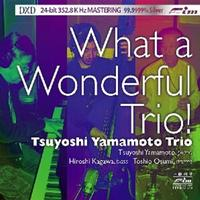 Tsuyoshi Yamamoto Trio - What a Wonderful Trio! -  DXD