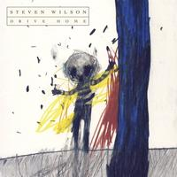 Steven Wilson - Drive Home -  DVD & CD