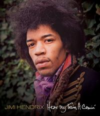 The Jimi Hendrix Experience - Hear My Train A Comin' -  DVD Video