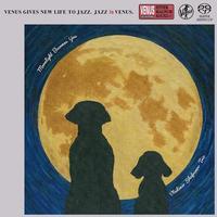 Vladimir Shafranov Trio - Moonlight Becomes You
