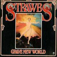 Strawbs  -Grave New World