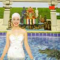 Stone Temple Pilots - Tiny Music. . . Songs from the Vatican Gift Shop
