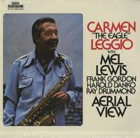 Carmen Leggio - Aerial View
