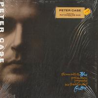 Peter Case - The man with the Blue postmodern fragmented neo-traditionalist Guitar