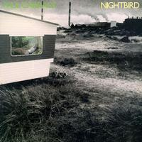 Paul Carrack - Nightbird