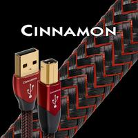 AudioQuest - Cinnamon USB cable Type A to Type B -  USB Cables