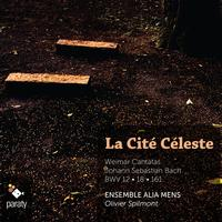 Ensemble Alia Mens and Olivier Spilmont - J. S. Bach: Weimar Cantatas