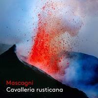 Melody Moore - Mascagni: Cavalleria rusticana (Live)