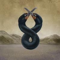 San Fermin - The Cormorant I & II