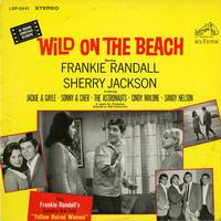 Various Artists - Wild On the Beach