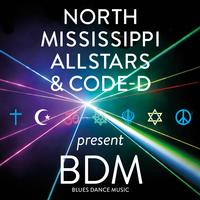 North Mississippi Allstars - BDM Blues Dance Music