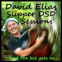 David Elias - Slipper DSD Sessions: And The Bit Goes On... -  FLAC 88kHz/24bit Download