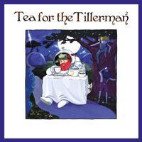Yusuf/Cat Stevens - Tea For The Tillerman 2 -  FLAC 44kHz/24bit Download