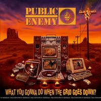 Public Enemy - What You Gonna Do When The Grid Goes Down? -  FLAC 48kHz/24Bit Download