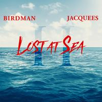 Birdman - Lost At Sea 2