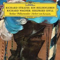Berliner Philharmoniker - Strauss, R.: Ein Heldenleben, Op. 40, TrV 190 / Wagner: Siegfried-Idyll, WWV 103 -  FLAC 96kHz/24bit Download