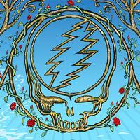 Dead & Company - Lockn' Festival, Arrington, VA, 8/26/2018 (Live)