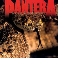 Pantera - The Great Southern Trendkill -  FLAC 88kHz/24bit Download