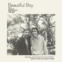 Various Artists - Beautiful Boy
