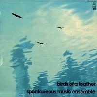 Spontaneous Music Ensemble - Birds Of A Feather