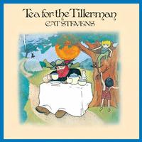 Cat Stevens - Tea For The Tillerman -  45 RPM Vinyl Record