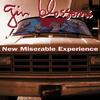 Gin Blossoms - New Miserable Experience -  Vinyl Record