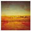 Damien Jurado - Where Shall You Take Me -  Vinyl Record